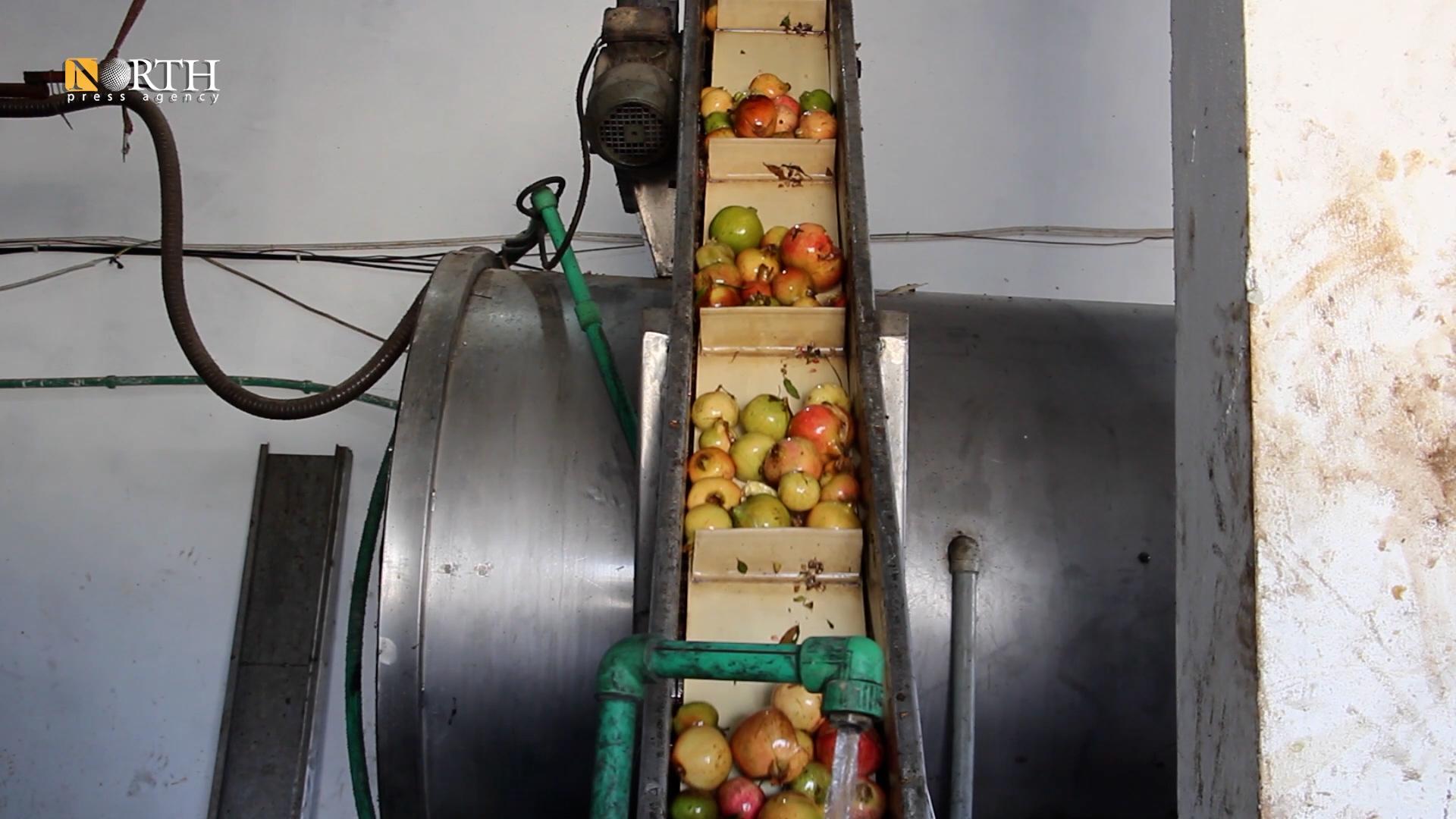 Pomegranate press in Manbij