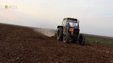 Photo of Farmers seed their lands before rainfalls in Syria's Qamishli countryside