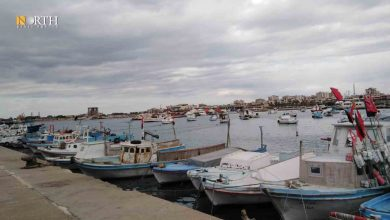 Photo of The big fish eat the small: Fishing in Syria's Latakia