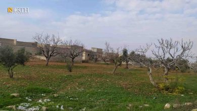 Photo of Mines and war remnants in Syria's Aleppo hinder agricultural work