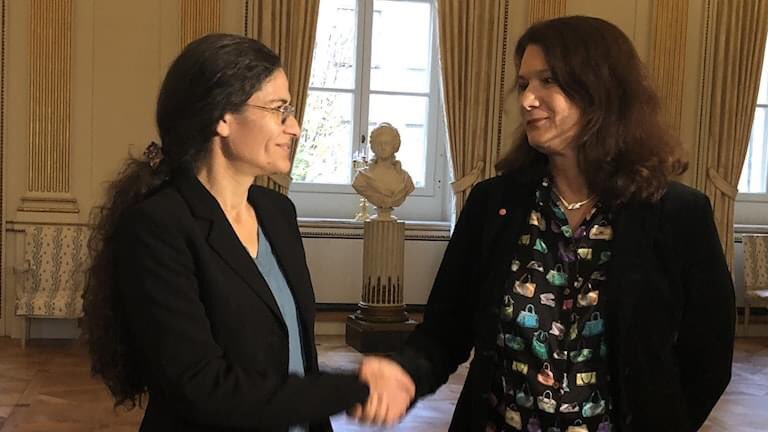 Swedish Foreign Minister, Ann Linde and SDC Executive Committee president, Ilham Ahmad