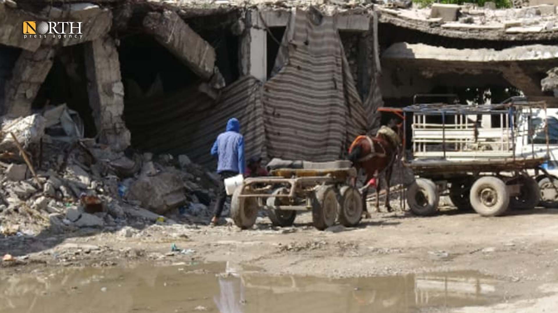 Young men from the city of Palmyra are collecting scrap from destroyed buildings - North Press