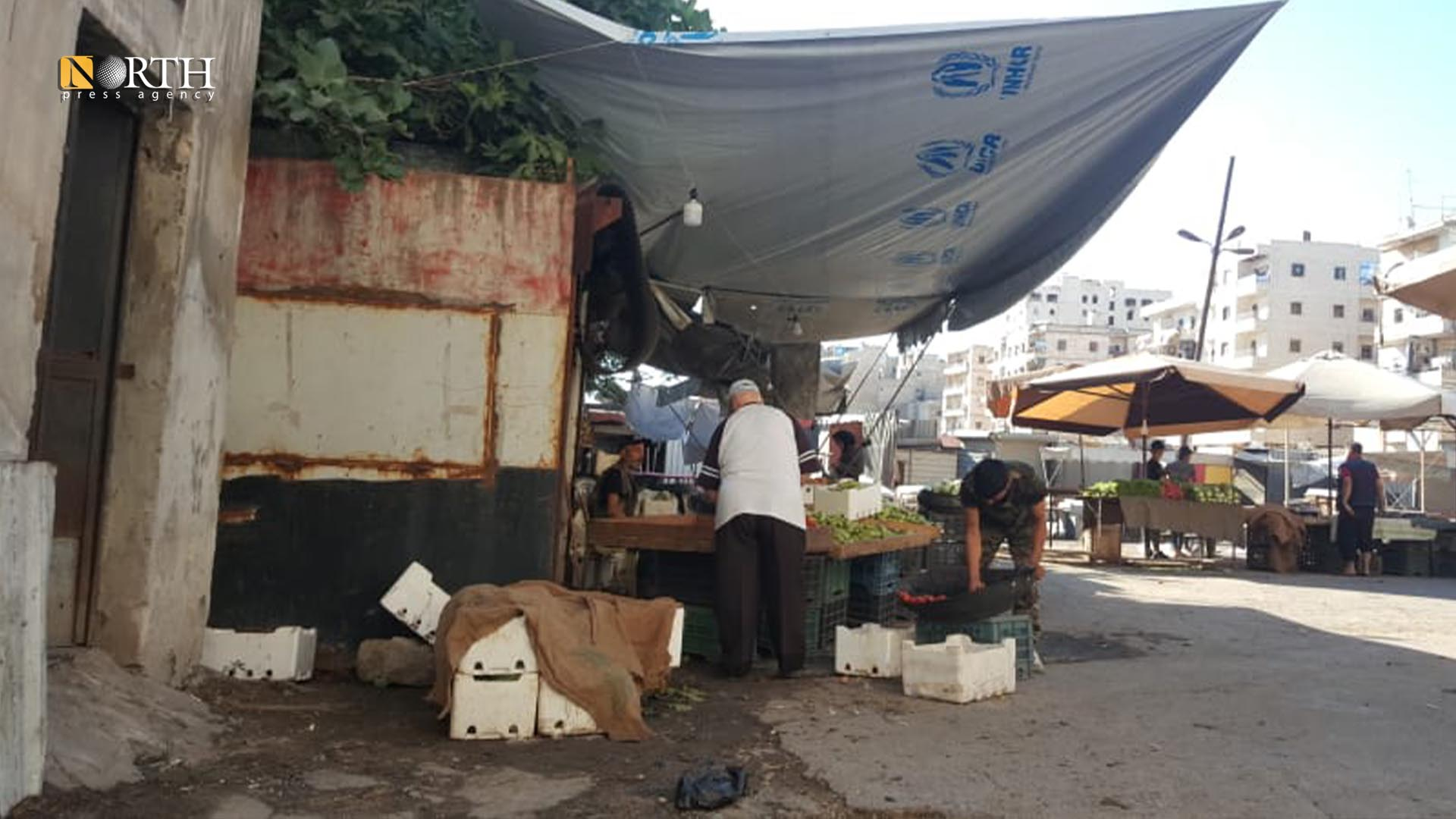 A greengrocer in the Ashrafieh neighborhood market in Aleppo- North Press