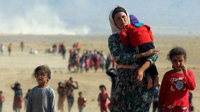 Photo of Yezidi official demands international community recognize massacre