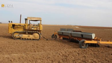 Photo of Farmers in Syria's northeast suffer from low quantities of wheat seeds
